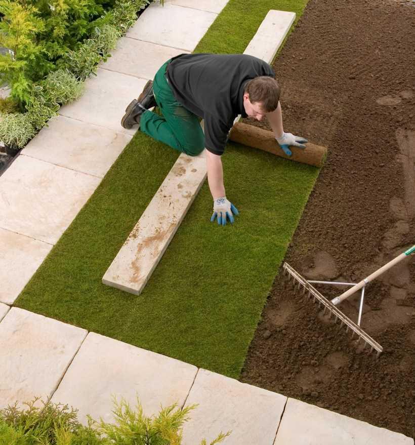 Рулонный газон: способы посадки своими руками, плюсы и минусы рулонного газона. Мастер-класс от садовников по подготовке почвы и укладке