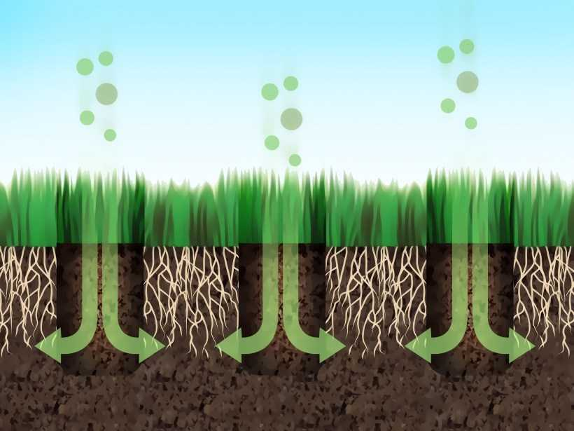 Аэратор для газона: специфика и способы аэрации, разновидности приборов, особенности применения + обзоры популярных моделей